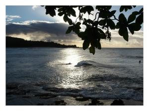 hawaiianmorning